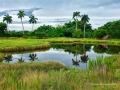 10-Juegos-de-agua-paisajes-2019